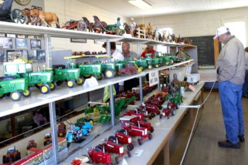 Farm Toys and Dolls Display